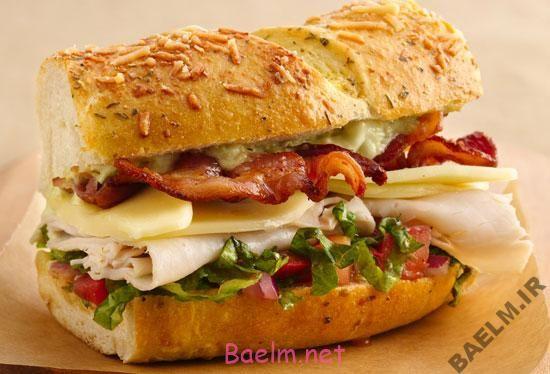 طرز تهیه سانـدويچ بوقلمــون