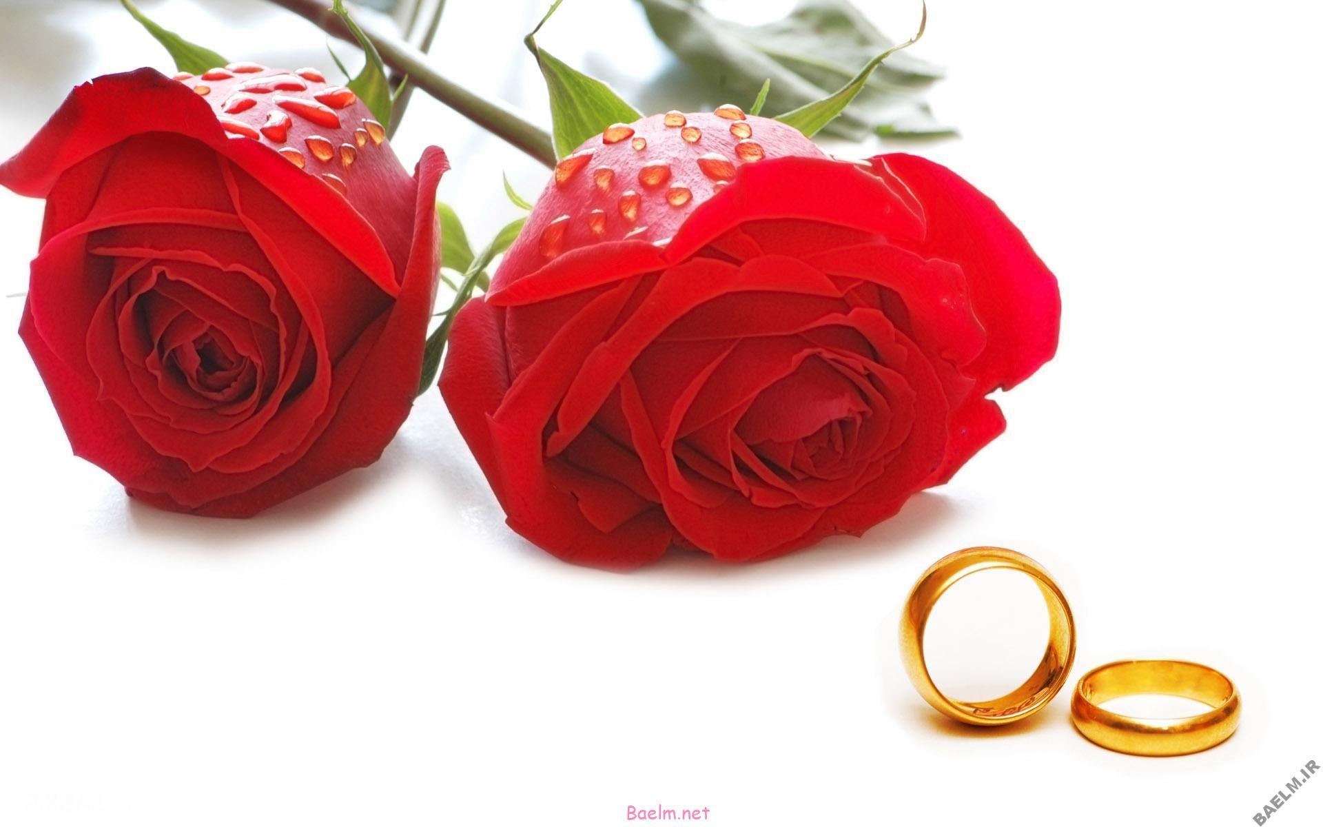 سبک زندگی : تفاوت رابطه نامشروع با ازدواج موقت