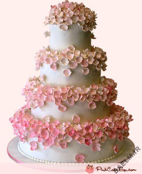 مدلهای جدید کیک،کیک عروسی،عروسی،مدل کیک،کیک،دنیای مد