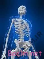 چه غذاهایی باعث آسیب به اسکلت استخوانی میشود؟