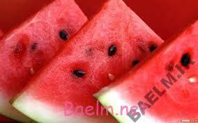 گياهان دارويي | هندوانه دفع كننده سموم بدن در فصل گرما