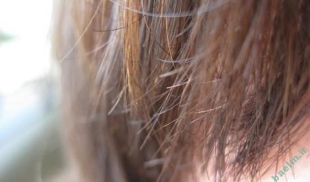 سلامت مو | روش های درمان موخوره در موهای بلند !