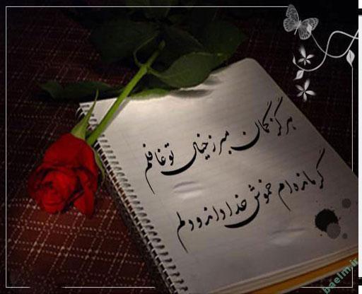 عکس پروفایل گل با متن