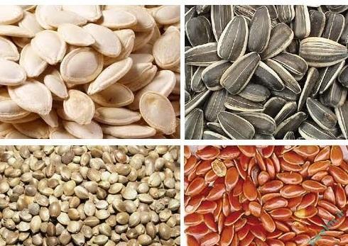 خواص مواد غذایی   5 دانهی سالمی که هر روز باید مصرف کنید