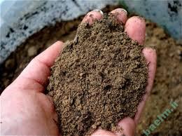 تعبیر خواب | تعبیر دیدن خاک در خواب