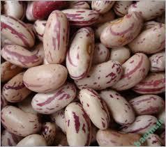 خواص مواد غذایی   آشنایی با ارزش غذایی لوبیا چیتی