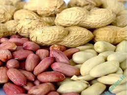 خواص مواد غذایی | اثرات معجزه آسای بادام زمینی برای سلامتی