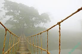 تعبیر خواب رفتن | تعبیر عبور کردن (رد شدن) در خواب | عبور از روی پل