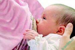 شیردهی,دوران شیردهی,شیردهی نوزاد,فواید شیردهی,مزایای شیردهی