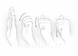 حرکت تقویت تاندون های انگشت ها