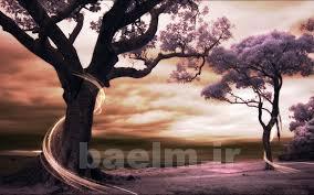 عکس | عکسهای زیبا و قشنگ برای پس زمینه (Wallpapers)سری 2