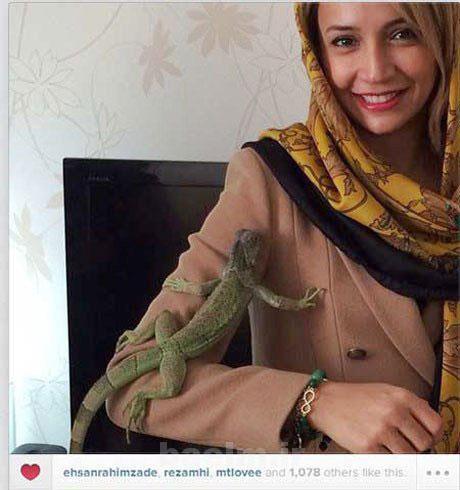 اخبار,اخبارفرهنگی,حیوان خانگی شبنم قلی خانی