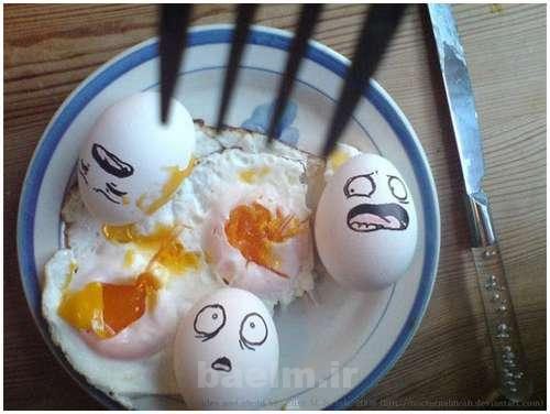 Funny-and-Clever-Egg-Photography-6