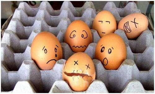 Funny-and-Clever-Egg-Photography-9