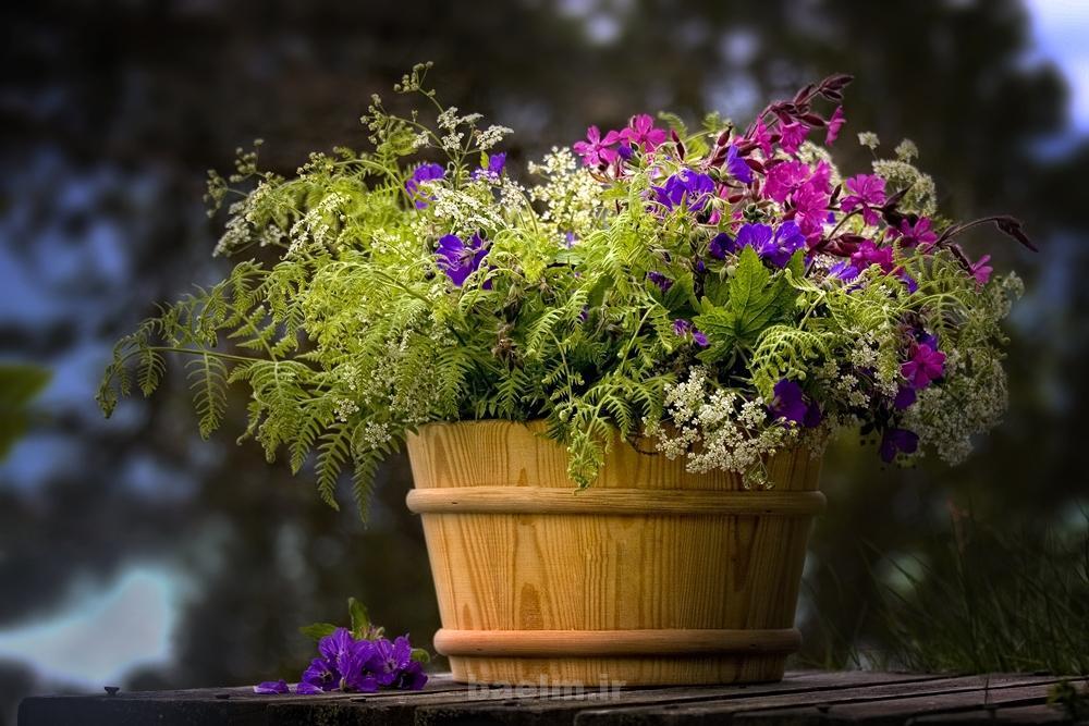 beautiful flower pots 15 Beautiful Flower Pots