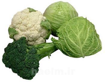 گياهان دارويي | برخي از سبزيجات ميكروب كش رو بشناسيد