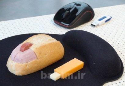 عکسهایی از چند نوع ساندویچ به شکلهای بسیار جالب