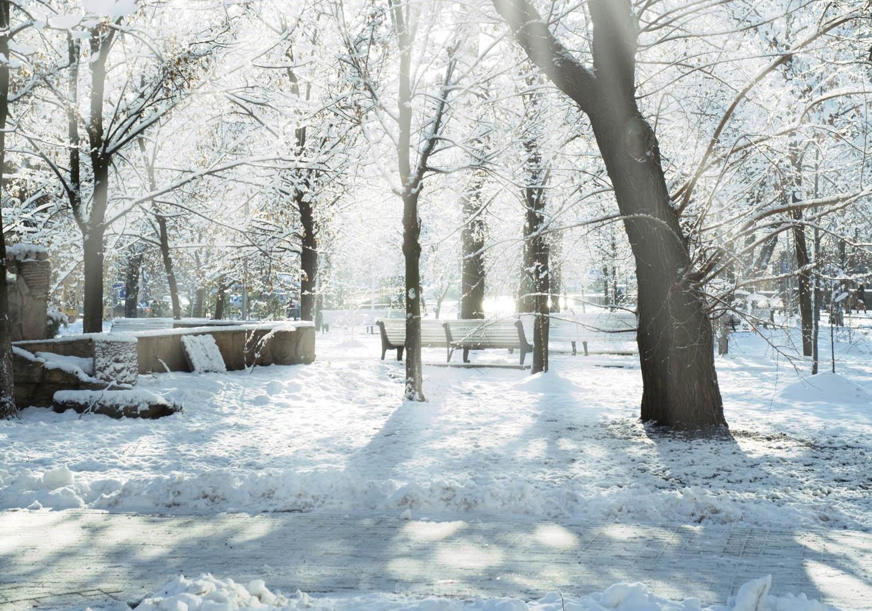 winter scenes 3 Wonderful Winter Scenes