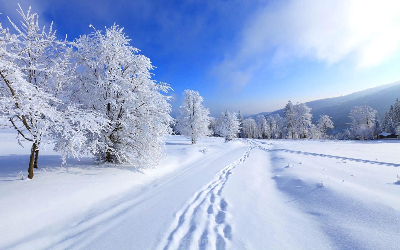 winter scenes 5 Wonderful Winter Scenes