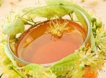 گياهان دارويي   زيرفون و خواص دارويي و درماني آن