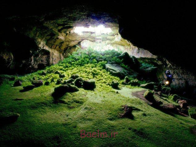 25 Exquisite Pictures of Nature Part.3