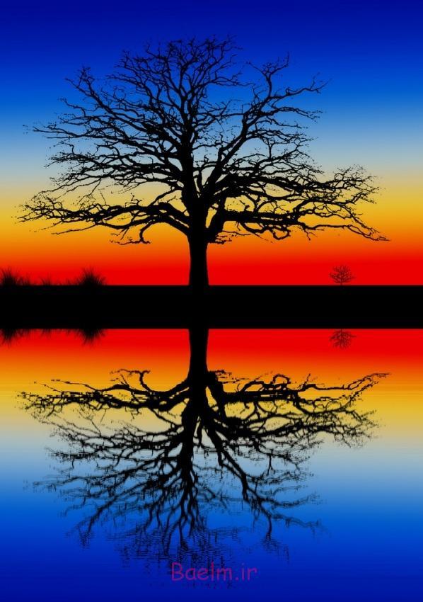 عکس های زیبا | بازتاب عکس طبیعت در آب (بسیار جالب)