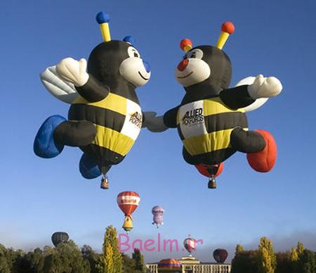 Bees Hot Air Balloons