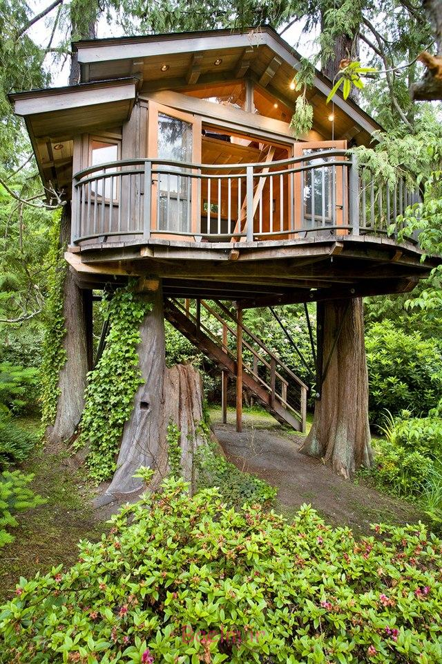 amazing tree house designs 11 Amazing Tree House Designs