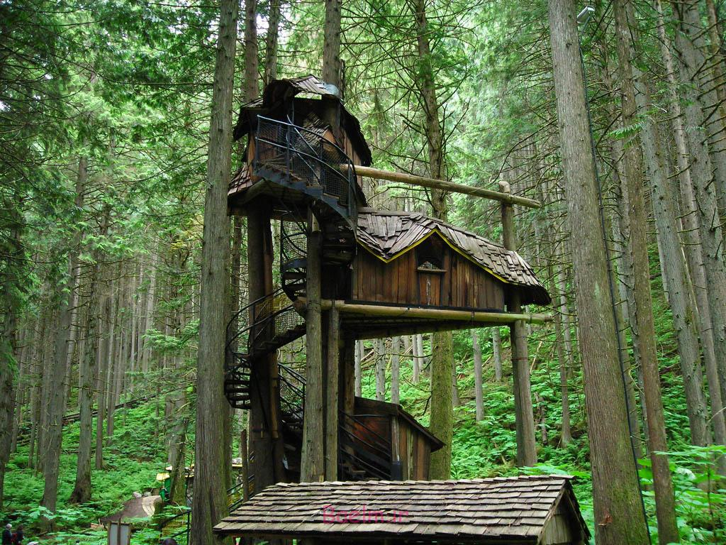 amazing tree house designs 12 Amazing Tree House Designs