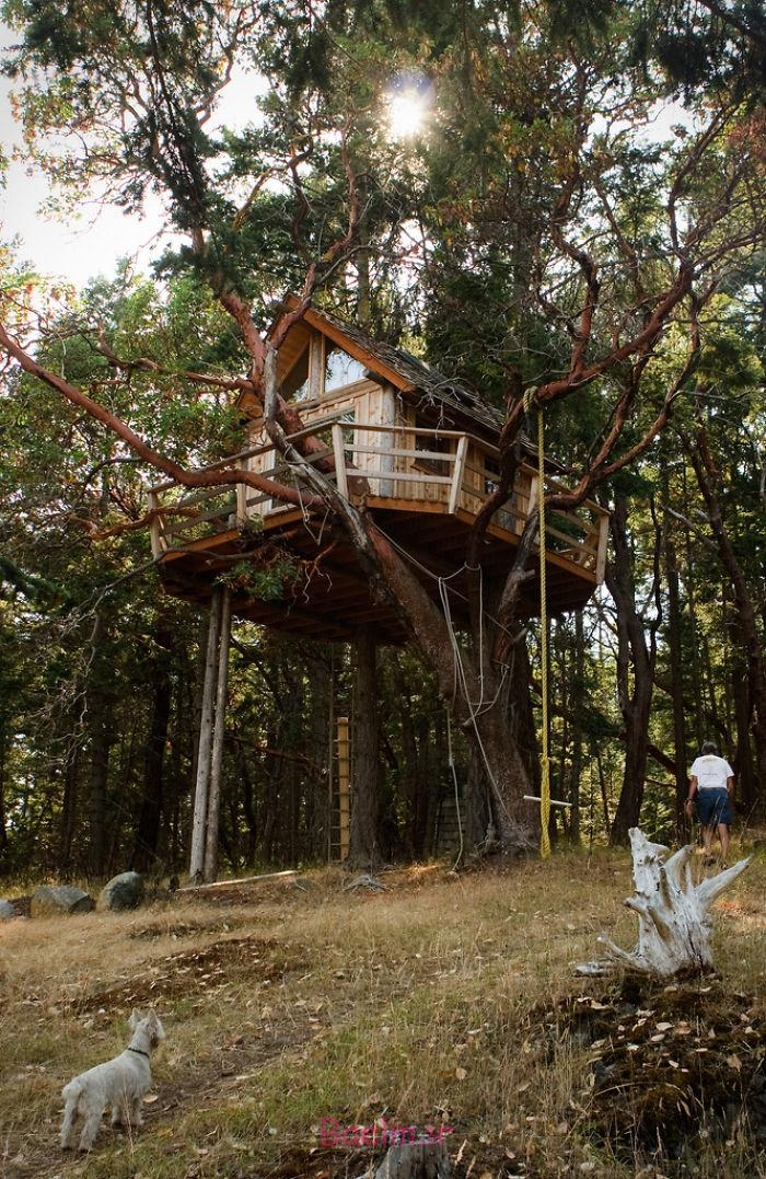 amazing tree house designs 14 Amazing Tree House Designs
