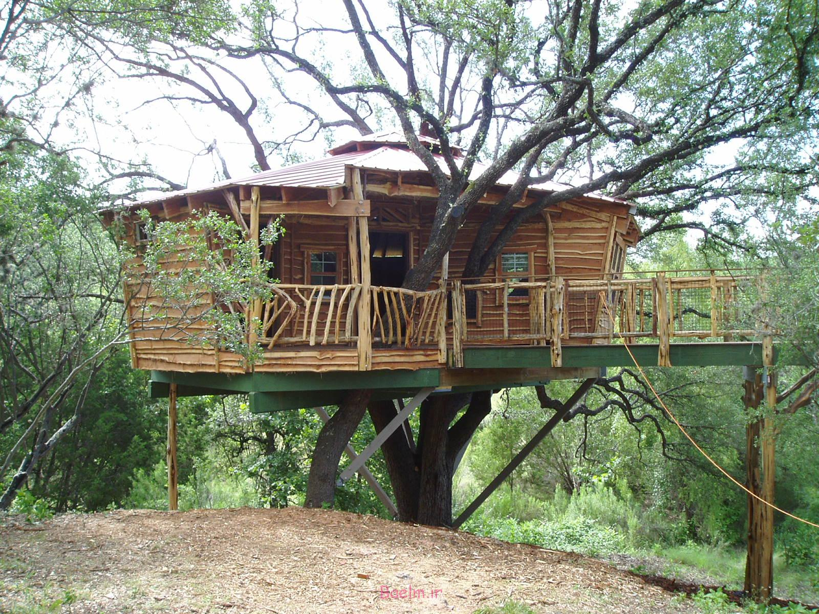 amazing tree house designs 16 Amazing Tree House Designs