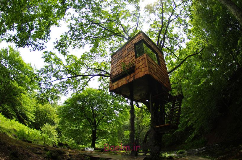 amazing tree house designs 17 Amazing Tree House Designs
