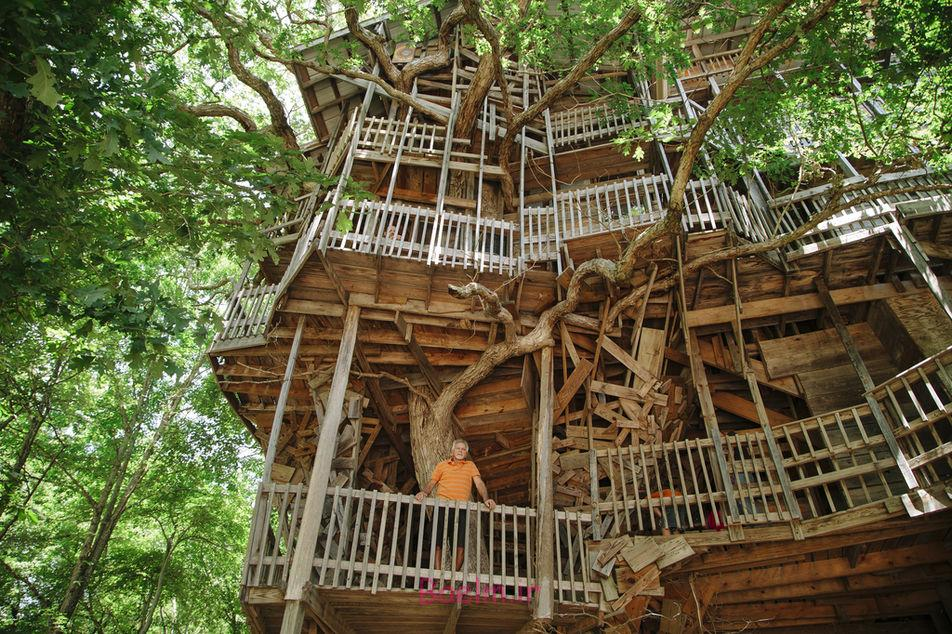 amazing tree house designs 2 Amazing Tree House Designs