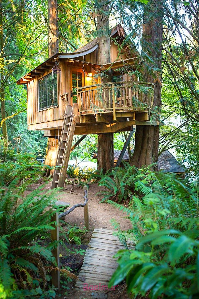 amazing tree house designs 8 Amazing Tree House Designs