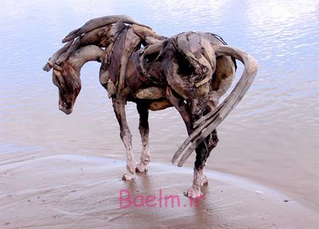 عکسهای جالب | مجسمه های چوبی به شکل اسب