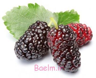 میوه های سیاه,میوه های تیره,خواص میوه های سیاه