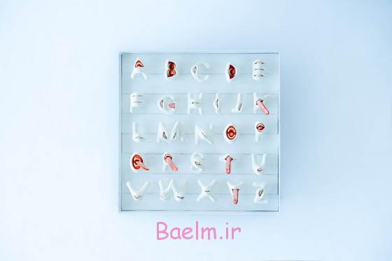 وحشت زده حروف الفبا دهان 3D توسط تاکایوکی اوگاوا