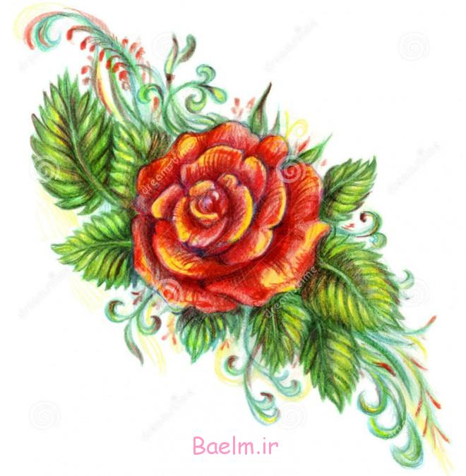 Flower Drawing