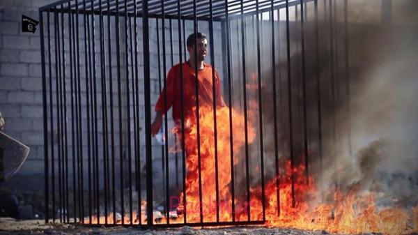 داعش خلبان اردني را زنده زنده آتش زد | ويدئو +18 خبر سوزاندن خلبان اردني