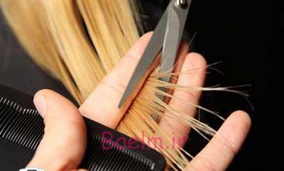 بهداشت مو   توصيه هاي كليدي براي مقابله با موخوره