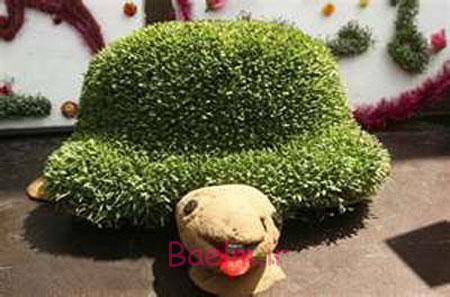 مدل سبزه هفت سین,کاشت سبزه هفت سین