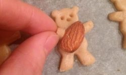 آموزش تصویری | پخت کوکی های فانتزی به شکل خرس (بدون شرح)