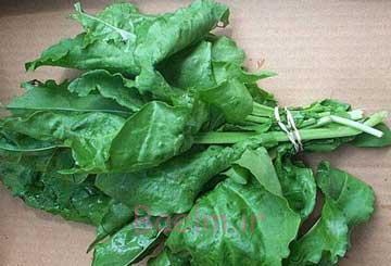 فواید خوردن سبزیجات برگ دار