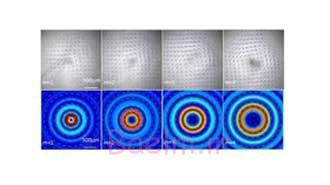 اخبار,اخبار علمی,ابداع پیچگوشتی صوتی میکروسکوپی