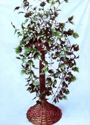 برگ گیاه پاپیتال بزرگ و شکوفه