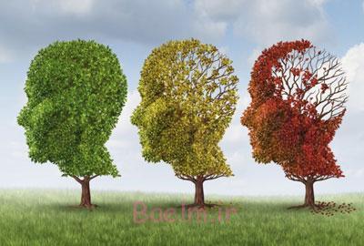 علائم بیماری آلزایمر, اختلال عملکرد مغزی