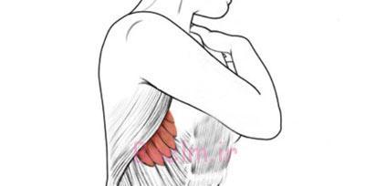 تناسب اندام, ورزش, تقویت عضلات پائین تنه