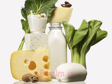 11-calcium-rich-fat-burning-foods-01-salemzi.jpg