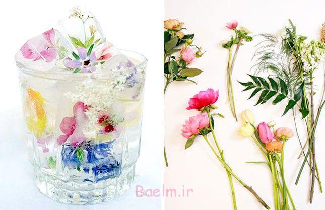 تکه های یخ را گل برای قرار دادن به نوشیدنی های خود را