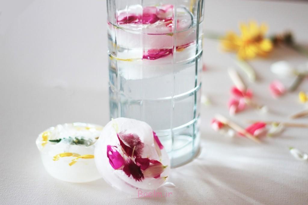 خوراکی گل یخ مکعب